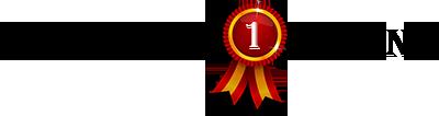 najlepsze-strony-logo